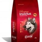 Pienso Canun premium Invictus